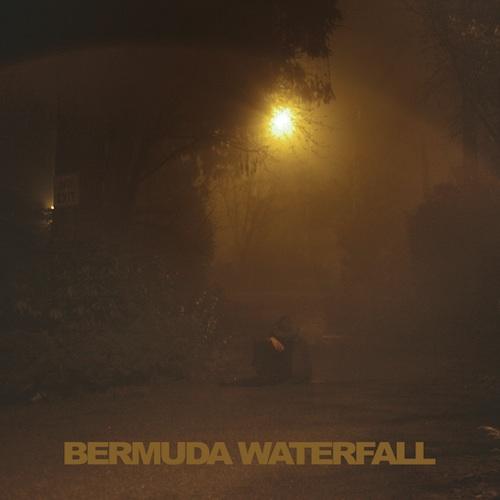 Sean Nicholas Savage - Bermuda Waterfall