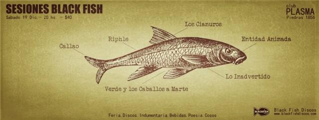 sesiones black fish