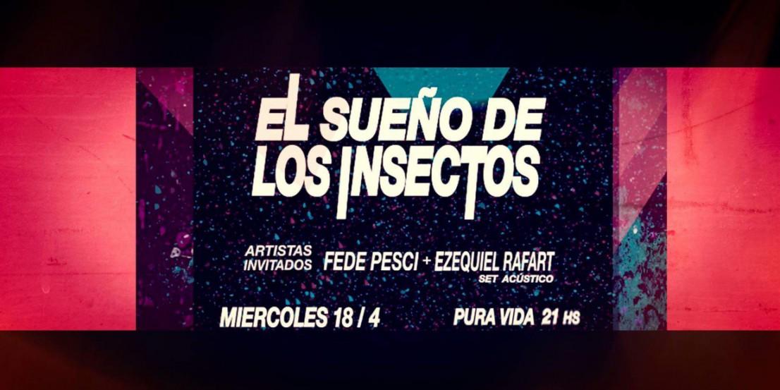 El sueño de los insectos en La Plata
