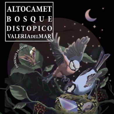 Altocamet + Bosque Distópico + Valeria del Mar en Mar del Plata
