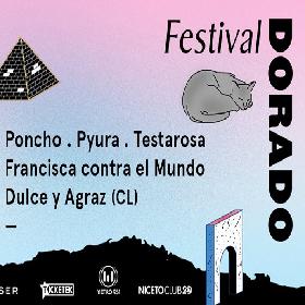 Festival Dorado en Niceto Club