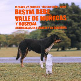 Bestia Bebé + Valle de Muñecas + Rosedal en Niceto Club