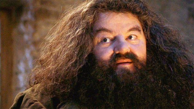 Harry Potter: El futuro de Hagrid después de la batalla de Hogwarts