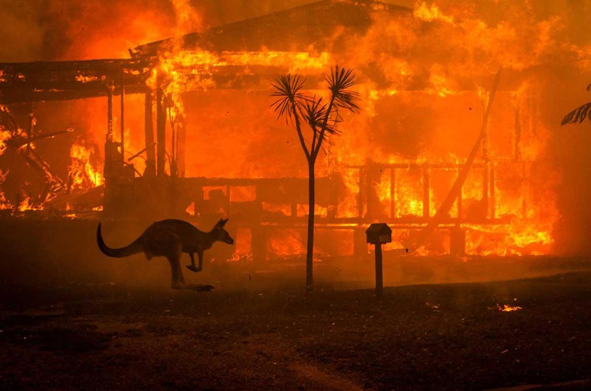 La historia detrás de la foto más famosa de los incendios