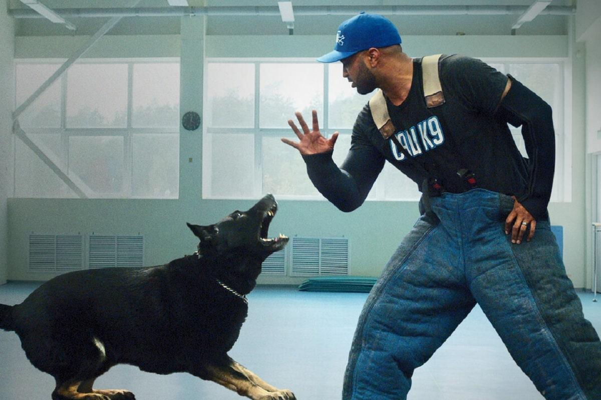 Adiestramiento canino: La nueva serie de Netflix que sigue el trabajo de un entrenador de perros