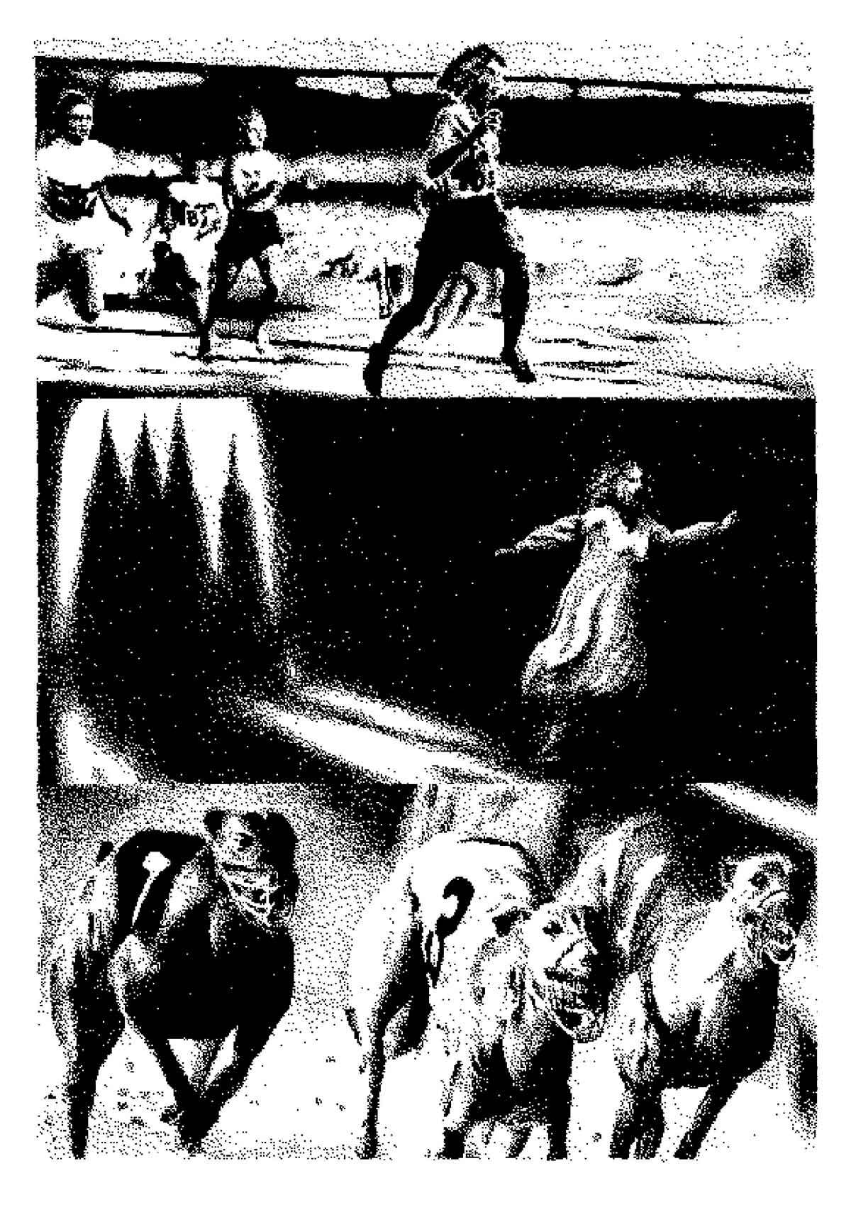 Galgo, comic de Athos Pastore